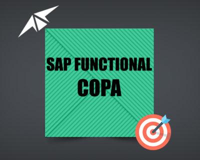 SAP COPA