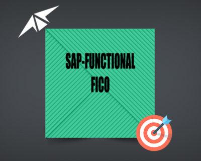 SAP FI/CO