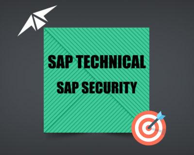 SAP SECURITY