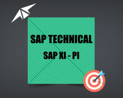 SAP XI – PI